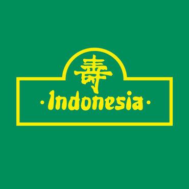 Indonesia-Icon